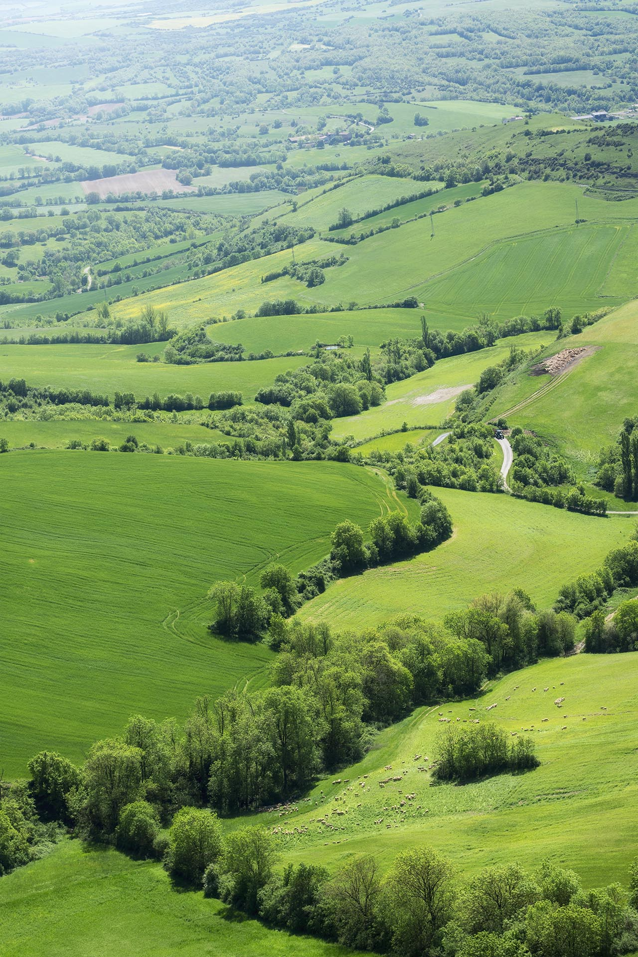 Frankrijk (Aveyron)